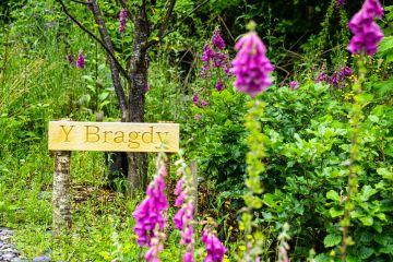 *NEW* Y Bragdy