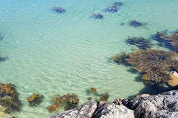 Traighenna Bay